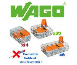 Lot de 50 borniers de connexion avec levier (14x2 + 30x3 + 6x5) - WAGO
