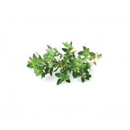 Recharge triple de Thym pour jardin d'intérieur Smart Garden 3 - Click and Grow