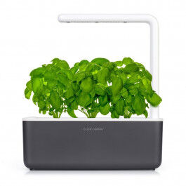Jardin d'intérieur Smart Garden 3 Dark Grey - Click and Grow