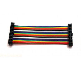 Câble d'extension GPIO 26 points 100mm mâle-mâle